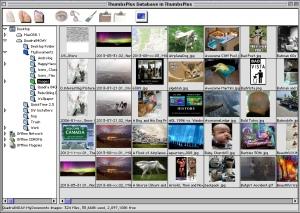 ThumbsPlus Screen Shot